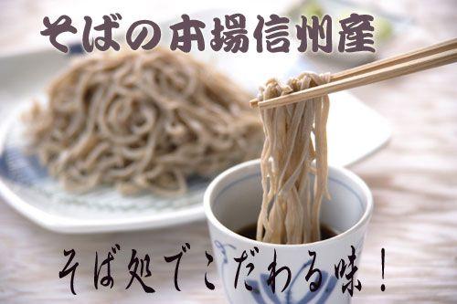 【送料無料】信州・黒姫高原 奥信濃生(なま)そば10食...